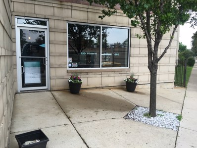 4968 N Milwaukee Avenue UNIT 1B, Chicago, IL 60630 - MLS#: 09984246