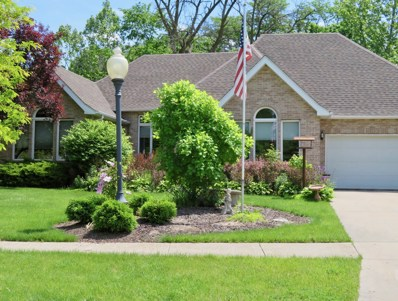 1057 Gladys Avenue, Morris, IL 60450 - #: 09984294