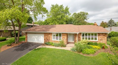 13720 Kickapoo Trail, Homer Glen, IL 60491 - MLS#: 09984378