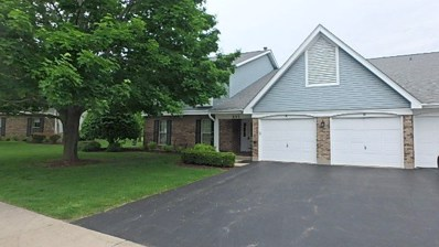 203 N Creekside Trail UNIT D, Mchenry, IL 60050 - MLS#: 09984459
