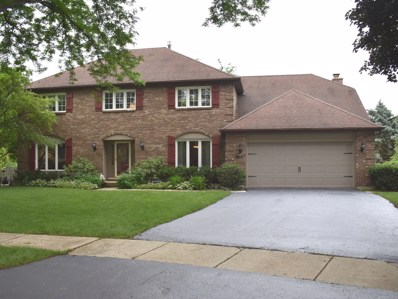 927 Chattanooga Court, Naperville, IL 60540 - MLS#: 09984492