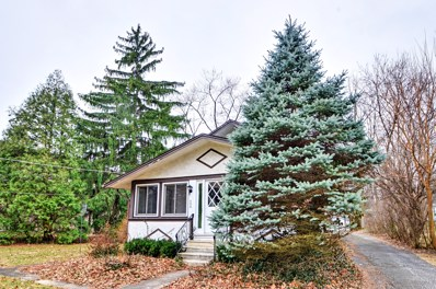 688 Western Avenue, Glen Ellyn, IL 60137 - MLS#: 09984620