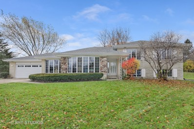 319 Hillside Court, Schaumburg, IL 60193 - MLS#: 09984790