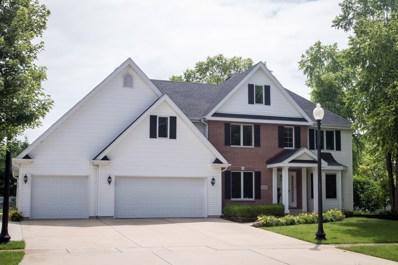 24347 S Dupage Drive, Channahon, IL 60410 - MLS#: 09985032