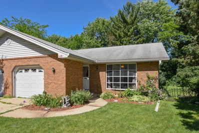 335 Princeton Avenue, Elgin, IL 60123 - MLS#: 09985228
