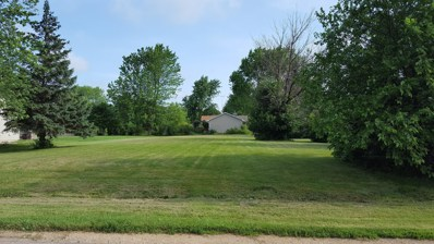 61 Tammy Lane, Lake Holiday, IL 60552 - MLS#: 09985572