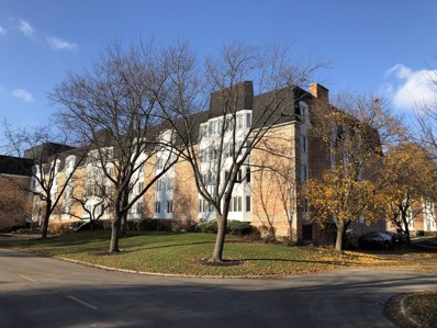 200 Lake Boulevard UNIT 408, Buffalo Grove, IL 60089 - MLS#: 09986033