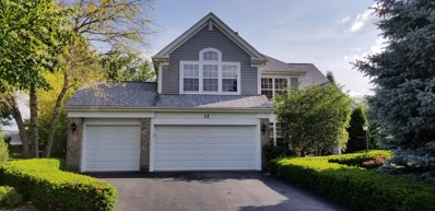 12 Morningside Court, Lake In The Hills, IL 60156 - #: 09986184