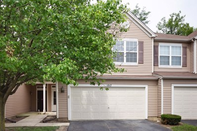 1017 Brush Hill Circle, Joliet, IL 60432 - #: 09986303