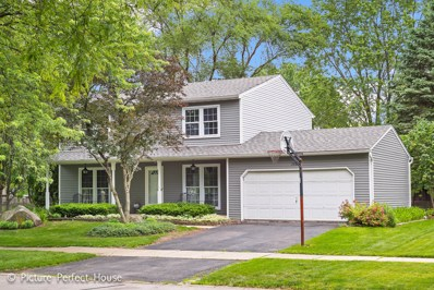 1106 Langley Circle, Naperville, IL 60563 - #: 09986816