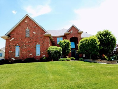 11883 Coquille Drive, Frankfort, IL 60423 - #: 09987040