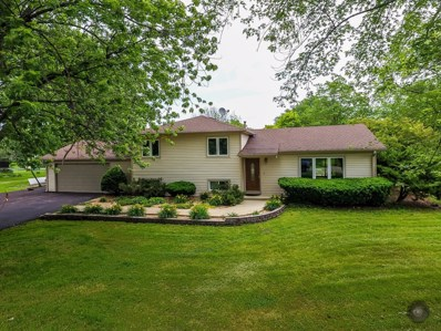 10s481  Whittington Lane, Naperville, IL 60564 - #: 09987772