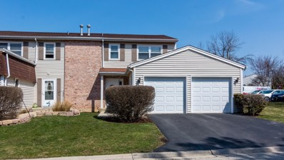 144 JULIE Road UNIT 144, Bolingbrook, IL 60440 - MLS#: 09987979