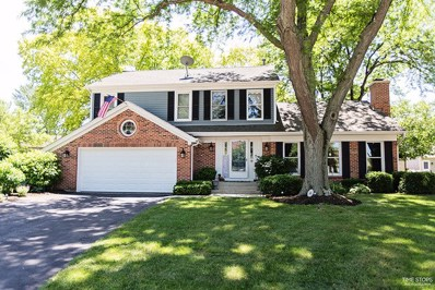 2910 Pine Tree Court, Aurora, IL 60502 - MLS#: 09988212