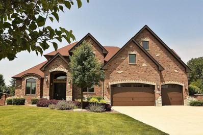 11087 Riverside Drive, Frankfort, IL 60423 - MLS#: 09988669