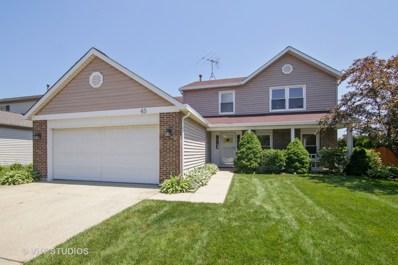 45 E Fabish Drive, Buffalo Grove, IL 60089 - MLS#: 09988672