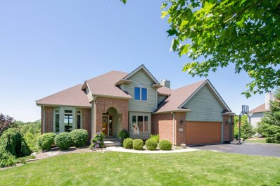 771 Dakota Drive, Woodstock, IL 60098 - #: 09989022