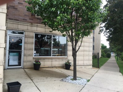 4968 N Milwaukee Avenue UNIT 1B, Chicago, IL 60630 - MLS#: 09989537