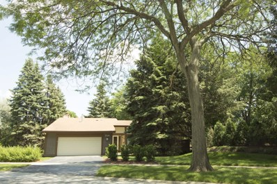 729 Woodfield Trail, Roselle, IL 60172 - #: 09989622