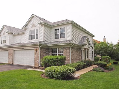 9533 RAINSFORD Drive, Huntley, IL 60142 - #: 09989712