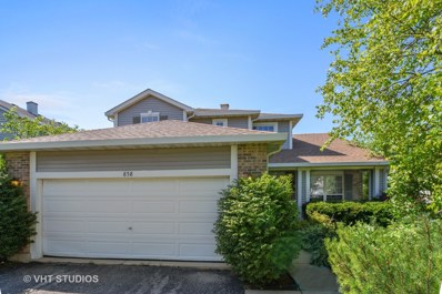 858 S Castlewood Lane, Bartlett, IL 60103 - MLS#: 09989742