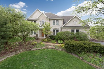 4440 Lee Avenue, Downers Grove, IL 60515 - #: 09989837