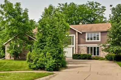 1113 Virginia Avenue, Libertyville, IL 60048 - MLS#: 09989908