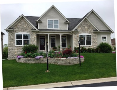 2061 Windham Circle, Wheaton, IL 60187 - #: 09989978