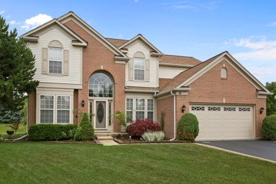 10 Hithergreen Court, Algonquin, IL 60102 - #: 09989981