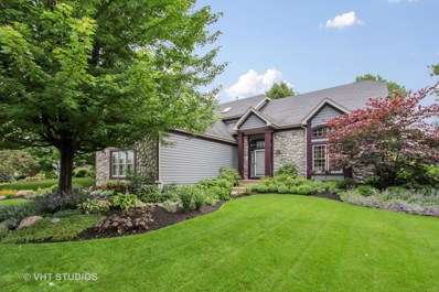 1191 Rodgers Lane, Lake Zurich, IL 60047 - #: 09990083