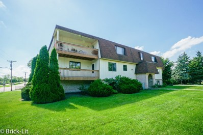 19444 Wolf Road UNIT 3, Mokena, IL 60448 - MLS#: 09990104