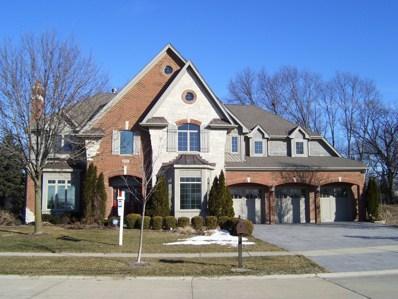 2511 PINE CONE Court, Naperville, IL 60565 - #: 09990157