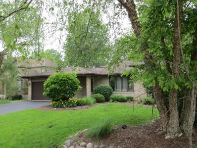 10s146  Skyline Drive, Burr Ridge, IL 60527 - #: 09990322