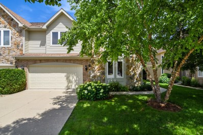 244 Taylor Court, Buffalo Grove, IL 60089 - MLS#: 09990803
