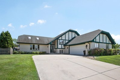 20507 S WHITE FENCE Court, Frankfort, IL 60423 - MLS#: 09991099