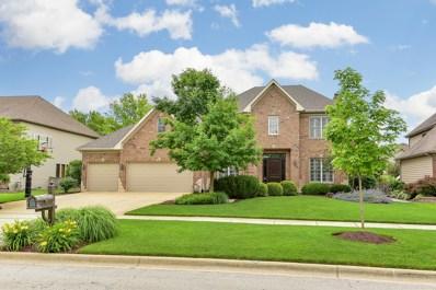 3512 Tall Grass Drive, Naperville, IL 60564 - MLS#: 09991195
