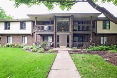 571 Somerset Lane UNIT 2, Crystal Lake, IL 60014 - #: 09991463