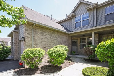 9017 Mansfield Drive, Tinley Park, IL 60487 - MLS#: 09991895