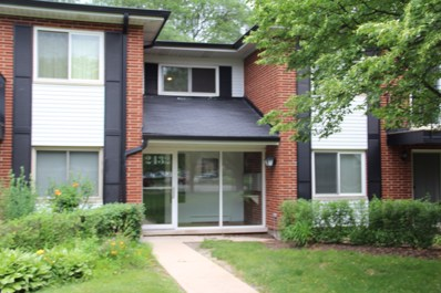 2432 E Brandenberry Court UNIT 1E, Arlington Heights, IL 60004 - MLS#: 09993197