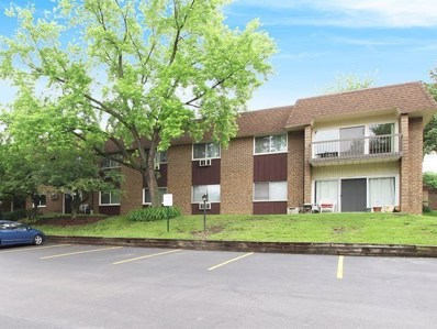 3435 83rd Street UNIT C-15, Woodridge, IL 60517 - #: 09993350