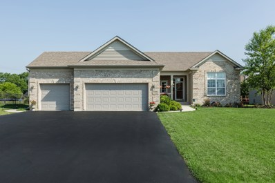 1125 Meadow Lake Court, Antioch, IL 60002 - #: 09994274