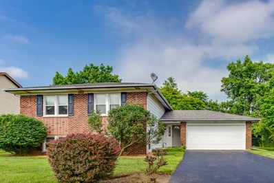 1009 Florida Lane, Elk Grove Village, IL 60007 - #: 09994371