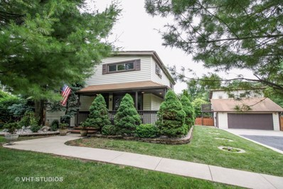 7N131  Willow Street, Roselle, IL 60172 - #: 09994408