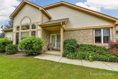 14406 S Provencal Drive UNIT 1, Homer Glen, IL 60491 - MLS#: 09994739