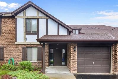 865 Johnstown Lane UNIT B, Wheaton, IL 60189 - MLS#: 09995058