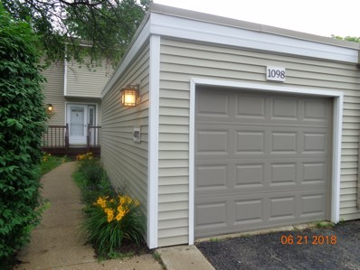1098 Rainwood Drive, Aurora, IL 60506 - MLS#: 09995167