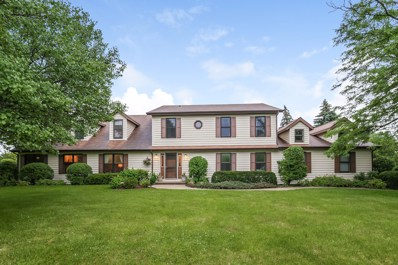 5361 Hedgewood Court, Long Grove, IL 60047 - #: 09995550