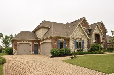 10715 Millers Way, Orland Park, IL 60467 - MLS#: 09995598