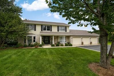 22390 Cambridge Drive, Kildeer, IL 60047 - MLS#: 09995852