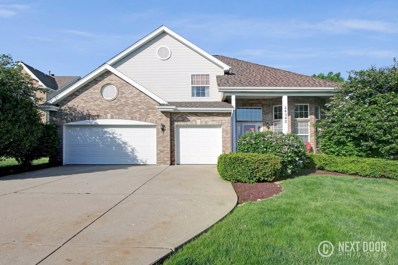 24342 GOLDEN SUNSET Drive, Plainfield, IL 60585 - MLS#: 09995886